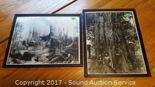 Vtg. Logging Photos